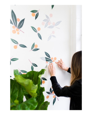 tangerines-in-greens-wall-decals