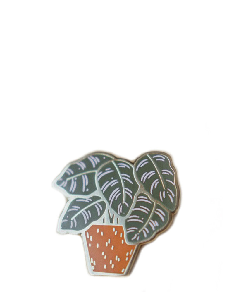 Pin Striped Calathea Enamel Pin – The Littlest Fry