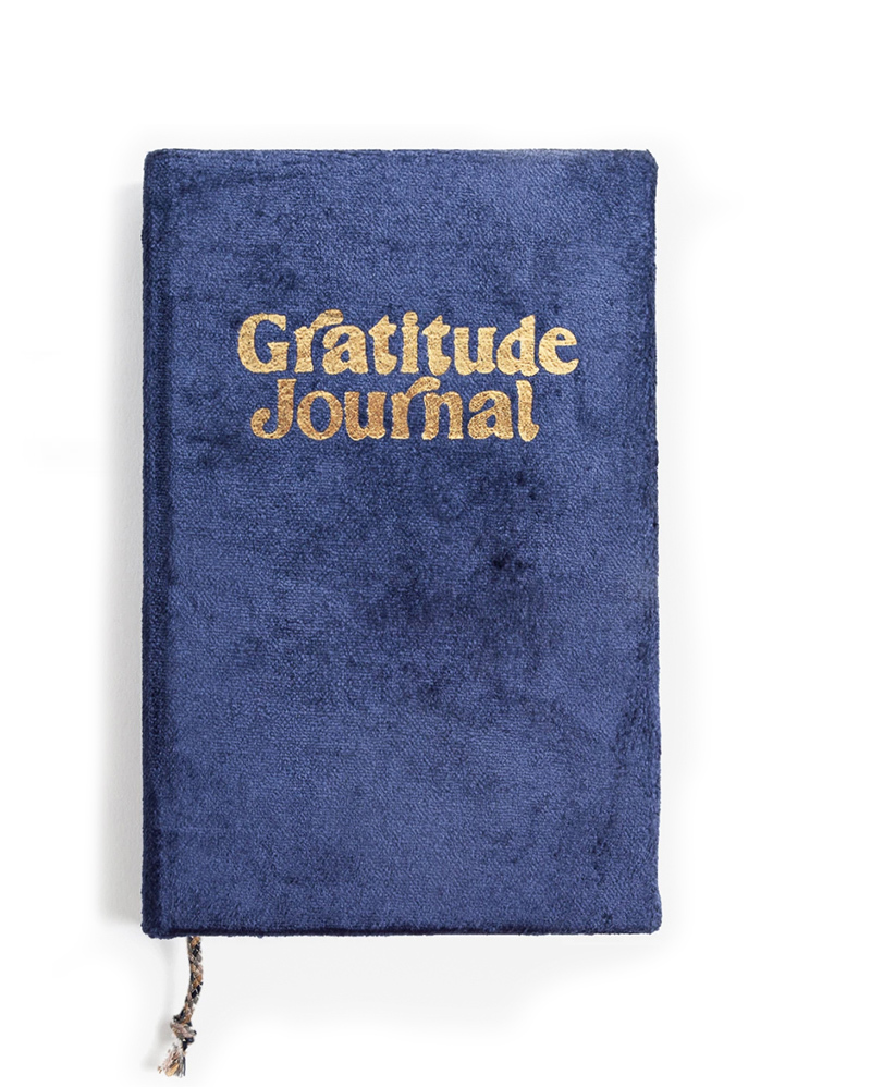 Navy Gratitude Journal – The Littlest Fry